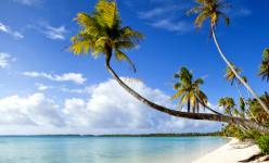 Vacances de Février 2021 en Martinique