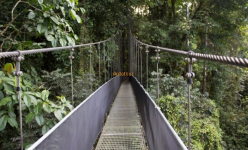 Autotour au Costa Rica